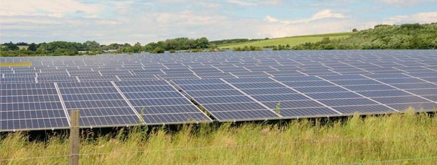 Walpole Solar Farm