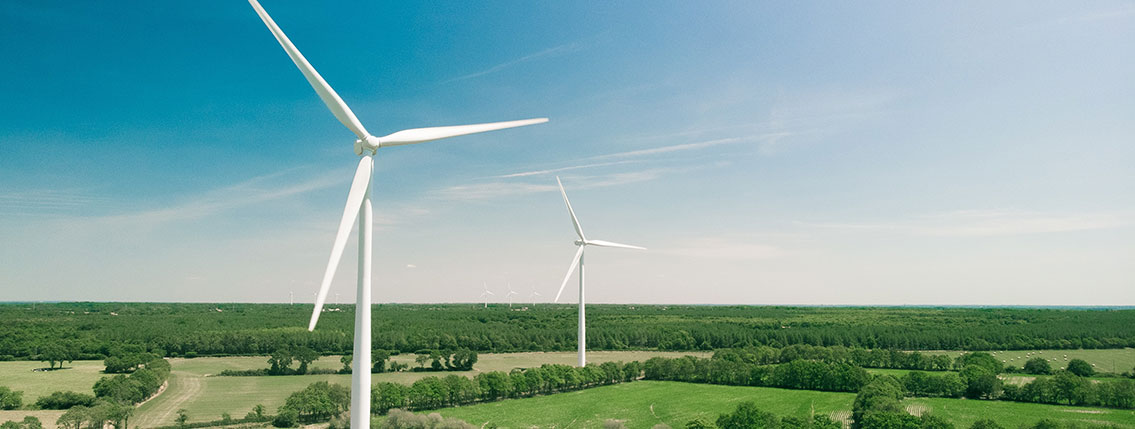 Blue Trail Wind Turbine
